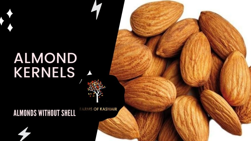 Almond Kernels- Almonds without shell