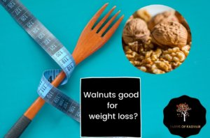 Walnuts good for weight loss
